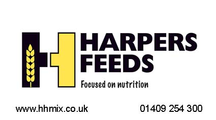 harpers-new-logo